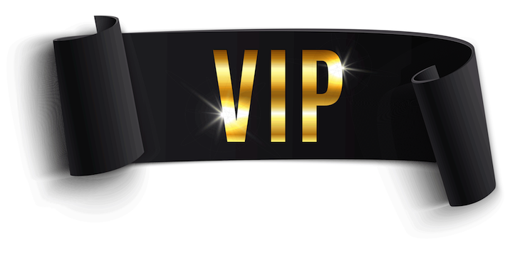 vip logo website